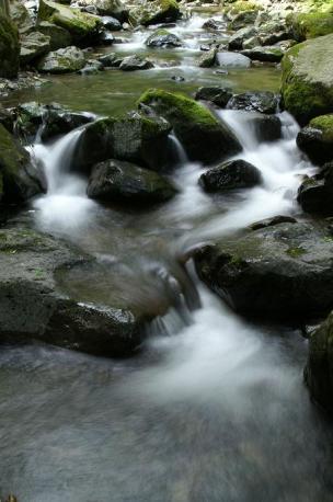 蛇淵から続く渓