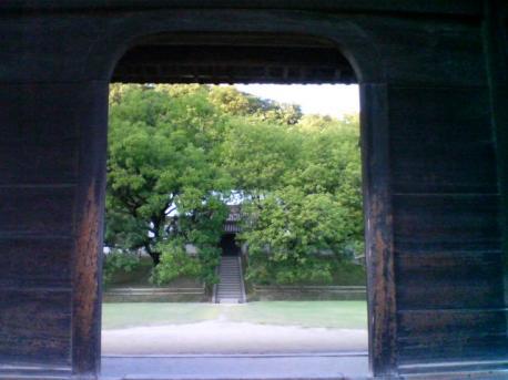 門から覗き見♪
