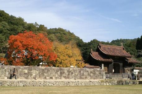 門と楷の木