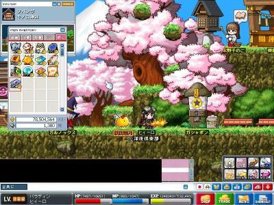 Maple000268.jpg