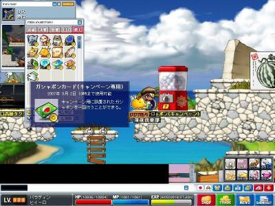 Maple000397.jpg