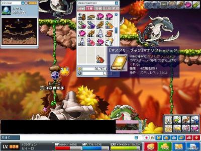 Maple000613.jpg