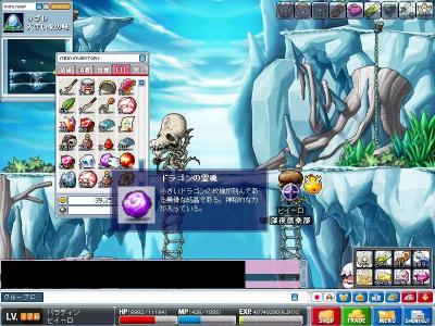 Maple000663.jpg