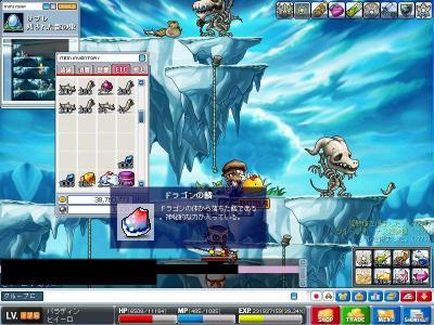 Maple000665.jpg