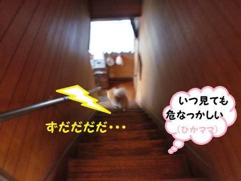 階段あぶない