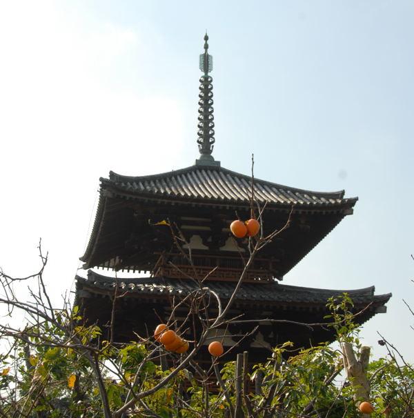 法起寺y06