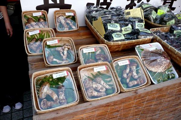 sasayama03.jpg