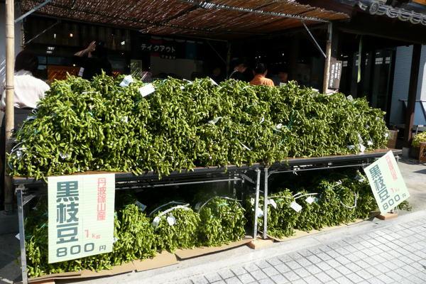 sasayama04.jpg