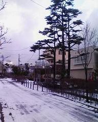 栄所通り in winter