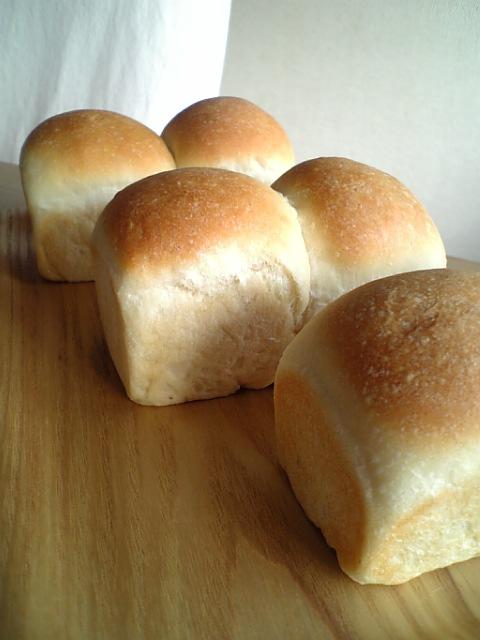 ミニ山食パン