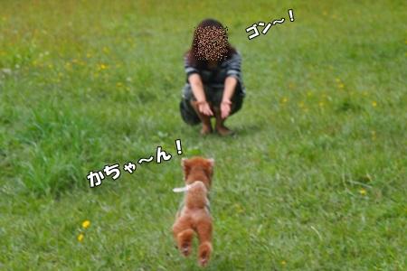 P8033607-cropあ