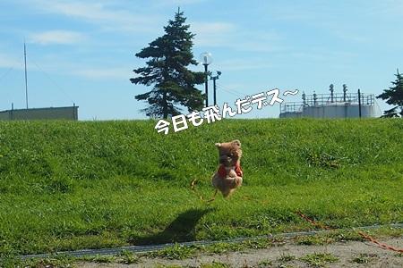 P9286262-cropあ