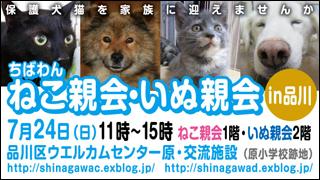 nekoinuoyakai20110724_320x180.jpg