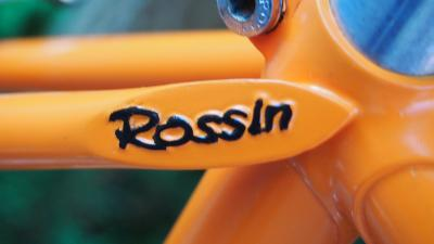 Rossin_19