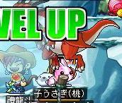 Maple0168.jpg