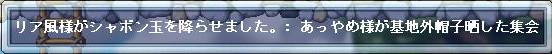 Maple0341.jpg