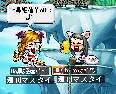 Maple0379.jpg