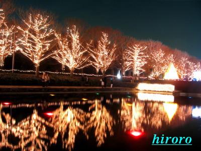 070905昭和記念公園0612