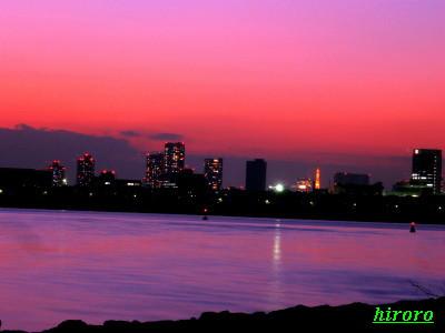 2007.11葛西臨海公園