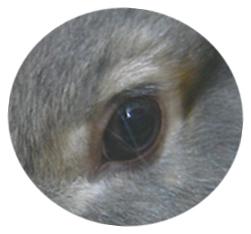200801123