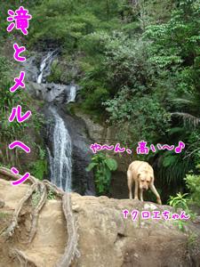 滝とメルヘン