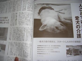 suzuko1.jpg
