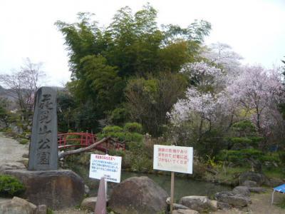 福島市の花見山11