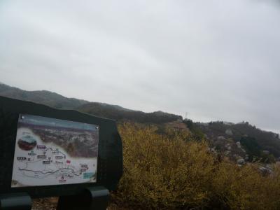 福島市の花見山16