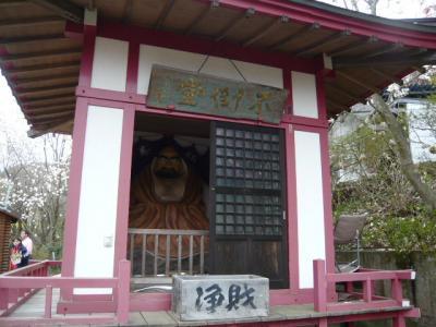 福島市の花見山21