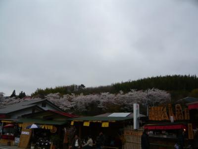 福島市の花見山25