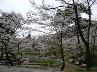 福島市街の観光4