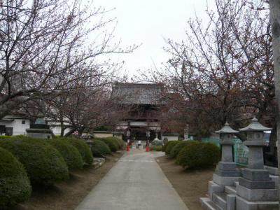 福島市街の観光17