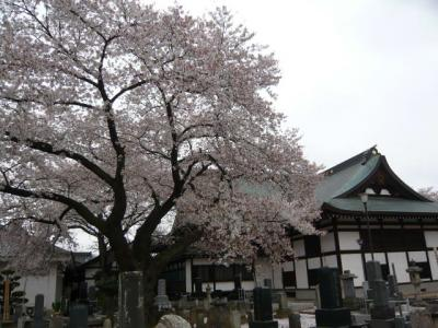 福島市街の観光20