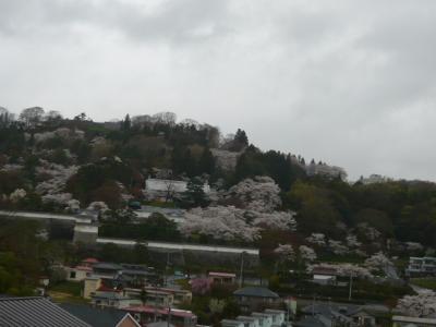 二本松の霞ヶ城公園6