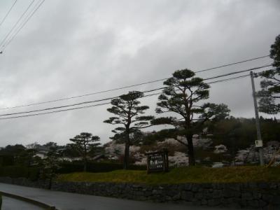 二本松の霞ヶ城公園7