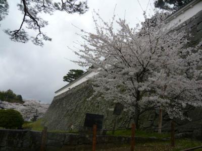 二本松の霞ヶ城公園11