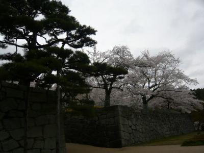 二本松の霞ヶ城公園12