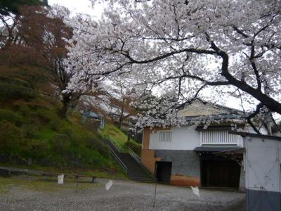 二本松の霞ヶ城公園15