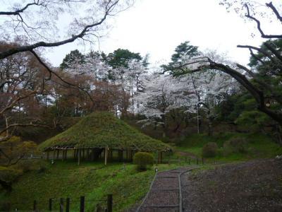 二本松の霞ヶ城公園19