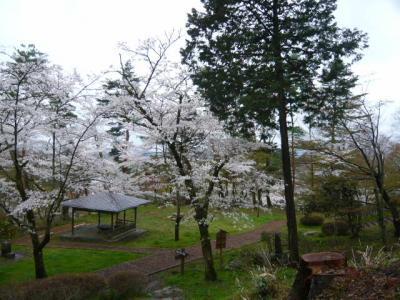 二本松の霞ヶ城公園26