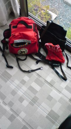 bag080128_1547~01