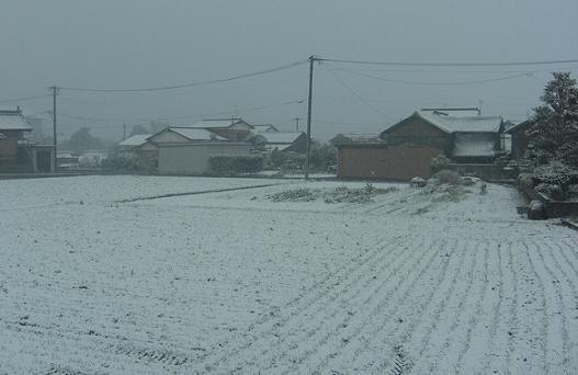 雪景色_01