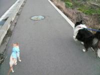 イチとお散歩