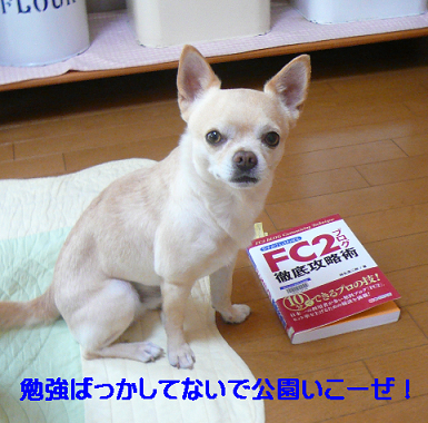 FC2攻略本