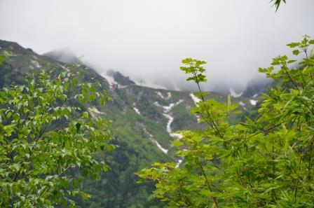 6月22日 中ア観光ロープウェイハイキング 044