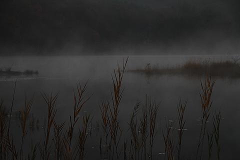 観音沼の夜明け0006