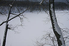 2012 02 19_6571
