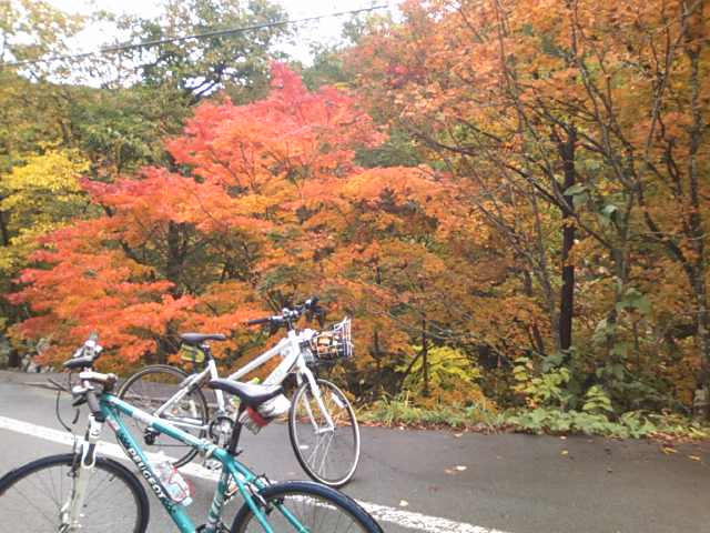 飛騨小鳥川の随所に現れる紅葉
