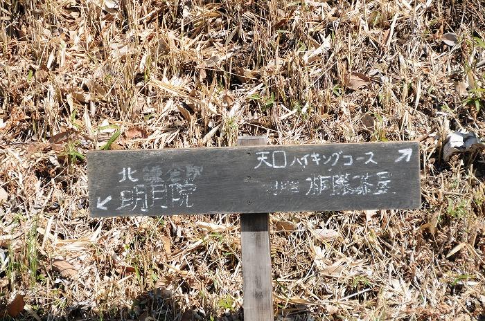 ASC_7923.jpg