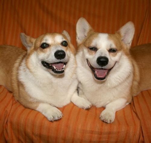 リッチの可愛い笑顔♪